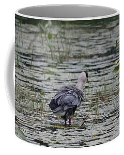 Breezy Blue- Great Blue Heron Coffee Mug by David Porteus
