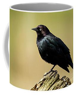 Brewers Blackbird Resting On Log Coffee Mug