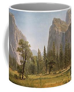 Bridal Veil Falls Yosemite Valley California Coffee Mug
