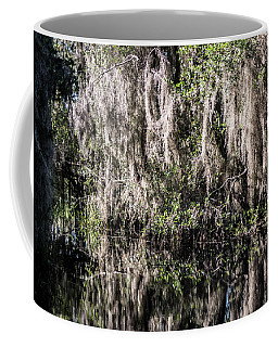 Coffee Mug featuring the photograph Bridal Veil by Sally Sperry