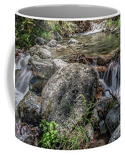 Bridalveil Creek Coffee Mug