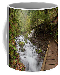 Bridge # 2 Coffee Mug