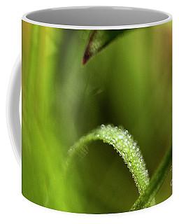 Bridge Of Beads Coffee Mug