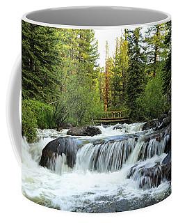 Bridge Over The Stream Coffee Mug