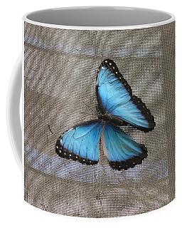 Bright Blue Butterfly Coffee Mug
