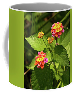 Bright Cluster Of Lantana Flowers Coffee Mug