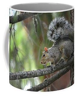 Bright Eyed N Bushy Tailed Coffee Mug