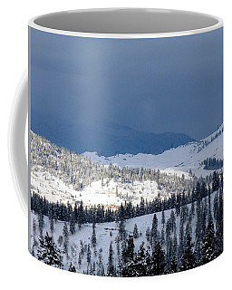 Coffee Mug featuring the photograph Bright Patch Of Sunshine by Will Borden