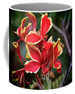 Coffee Mug featuring the photograph Bright Spot In My Day by Mary Machare