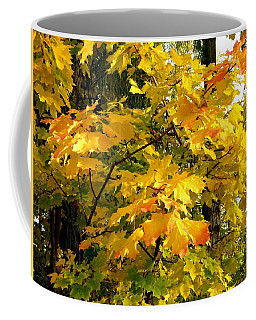Coffee Mug featuring the photograph Brilliant Maple Leaves by Will Borden
