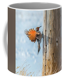 Brilliant Northern Flicker Woodpecker Coffee Mug by Yeates Photography