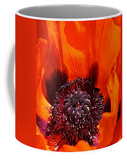 Coffee Mug featuring the photograph Brilliant Poppy by Bruce Bley