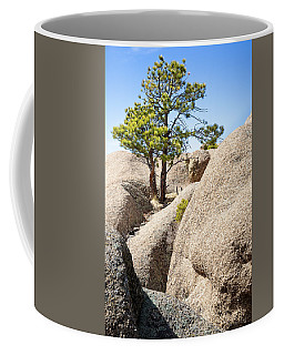 Coffee Mug featuring the photograph Bristlecone In Granite 2 by Tim Newton
