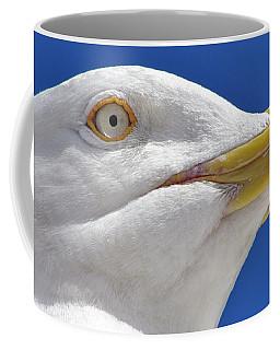 Coffee Mug featuring the photograph British Herring Gull by Terri Waters