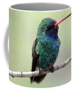 Broad-billed Hummingbird Portrait Coffee Mug