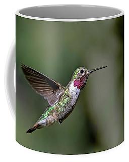 Broad-tailed Hummingbird Male Coffee Mug