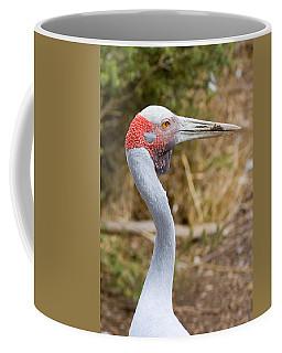 Brolga Profile Coffee Mug