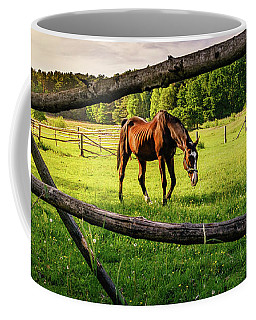 Coffee Mug featuring the photograph Brown And White by Dmytro Korol