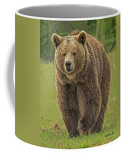 Brown Bear 1 Coffee Mug