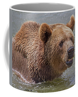 Brown Bear 10 Coffee Mug