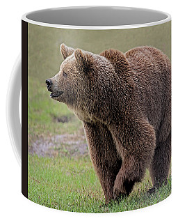Brown Bear 14.5 Coffee Mug