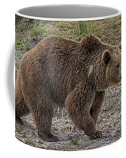Brown Bear 6 Coffee Mug
