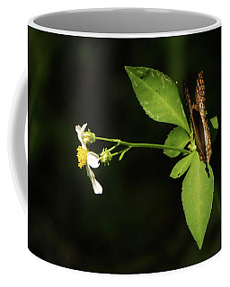 Brown Butterfly On Leaves Coffee Mug