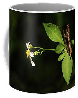 Brown Butterfly On Leaves Coffee Mug