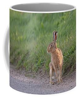 Brown Hare Listening Coffee Mug