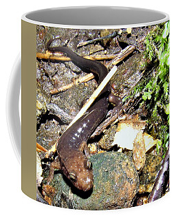 Brown Head Salamander Coffee Mug
