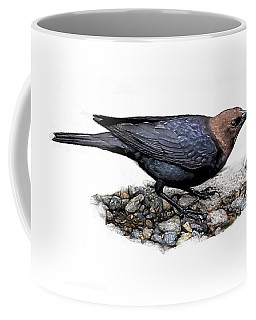 Brown Headed Cowbird Coffee Mug