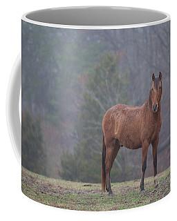 Brown Horse In Fog Coffee Mug