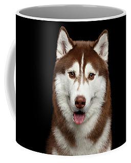 Brown Husky Coffee Mug