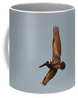 Brown Pelican In Flight No. 2 Coffee Mug