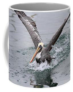 Brown Pelican Landing On Water . 7d8372 Coffee Mug