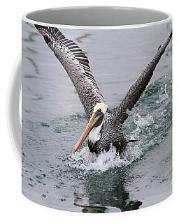 Brown Pelican Landing On Water . 7d8372 Coffee Mug