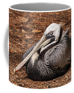 Brown Pelican Relaxing Coffee Mug