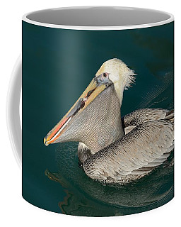 Brown Pelican With A Mouth Full Coffee Mug