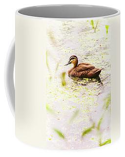 Brown Pond Duck Coffee Mug
