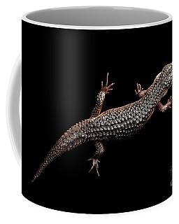 Coffee Mug featuring the photograph Brown Skink, Tropidophorus Baconi On Isolated Black by Sergey Taran