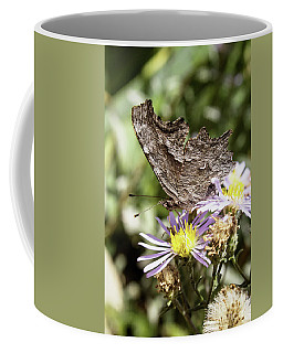 Brown Wings Coffee Mug