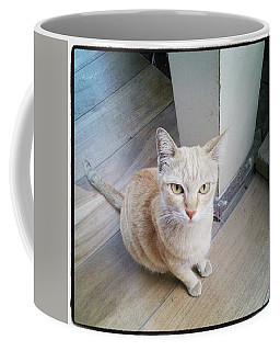 Coffee Mug featuring the photograph Brunch Companion. I Couldn't Resist by Mr Photojimsf