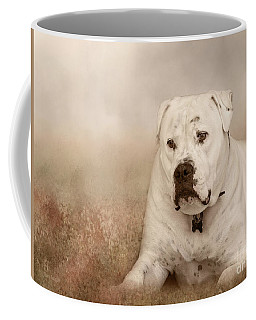 Brutus Dreaming Coffee Mug
