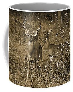 Buck And Doe In Sepia Coffee Mug