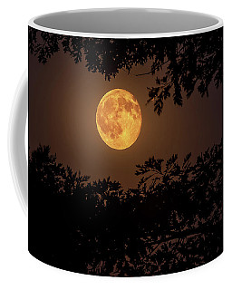 Coffee Mug featuring the photograph Buck Moon 2016 by Everet Regal