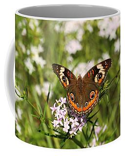 Buckeye Butterfly Posing Coffee Mug