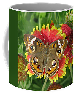 Buckeye On Blanketflower Coffee Mug