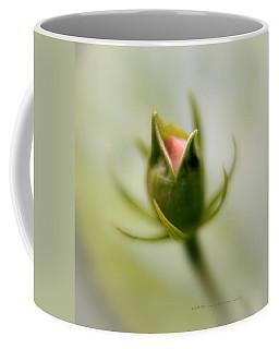 Bud Seeking Heaven Coffee Mug