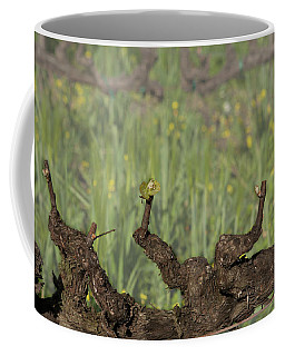 Coffee Mug featuring the photograph Budbreak In Carneros by Carol Lynn Coronios
