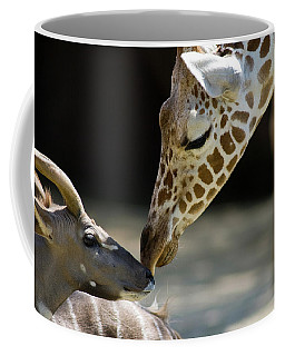 Coffee Mug featuring the photograph Buddies by Steve Stuller
